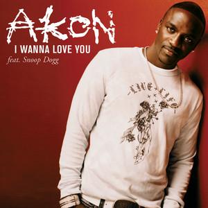 I Wanna Love You