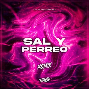 Sal y Perreo (Remix)