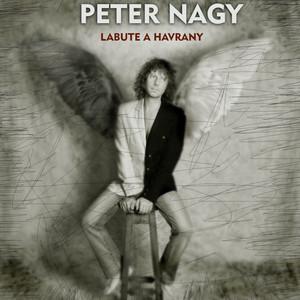 Nagy Peter Indigo - Profesor Indigo