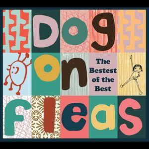 Dog On Fleas
