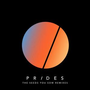 The Seeds You Sow (Remixes)