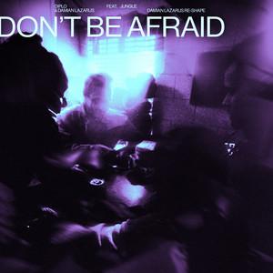 Don't Be Afraid (feat. Jungle) [Damian Lazarus Re-Shape]