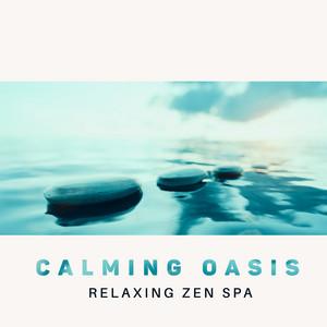 Calming Oasis - Relaxing Zen Spa: Deep Sleep, Soothing Delicacy Music, Relief