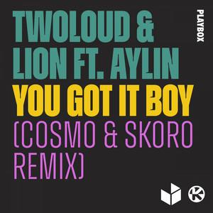 You Got It Boy (Cosmo & Skoro Remix)