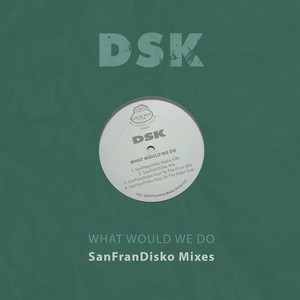 DSK – What Would We Do (Studio Acapella)