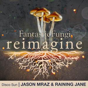 Disco Sun (Fantastic Fungi: Reimagine)