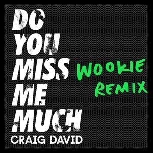 Do You Miss Me Much (Wookie Remix)