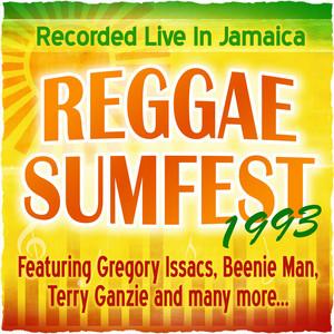 Reggae Sumfest 1993
