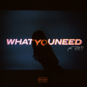 What You Need (feat THEY.)