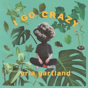 I Go Crazy - Acoustic