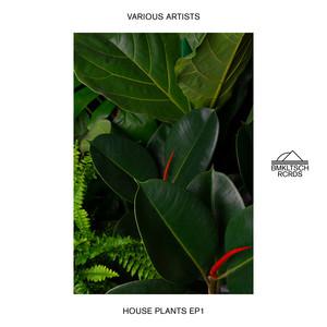 House Plants EP 1