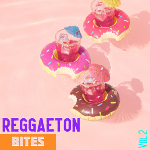 Reggaeton Bites Vol. 2