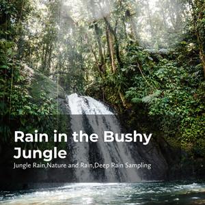 Tangled Jungle Rain cover art