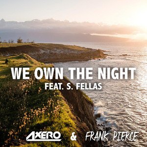 We Own The Night (feat. S. Fellas)