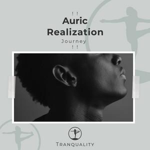 ! ! Auric Realization Journey ! !