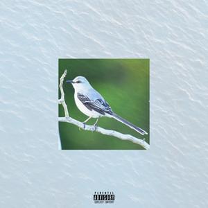 Mockingbird (Remix)