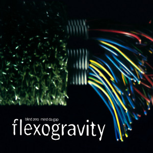 Flexogravity