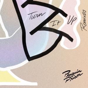 Turn It Up (Remixes)