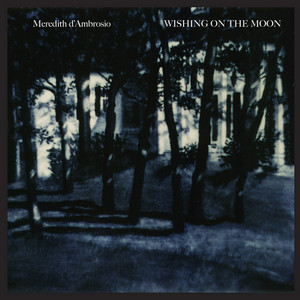 Wishing On The Moon album