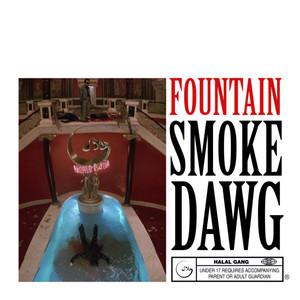 Fountain Freestyle
