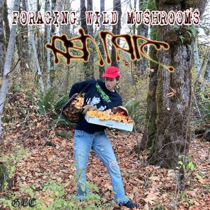 Foraging Wild Mushrooms