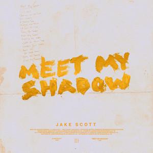 Meet My Shadow