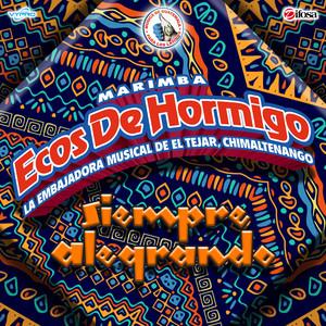 Recordar Bailando: Te He Prometido / La Ladrona by Marimba Ecos de Hormigo