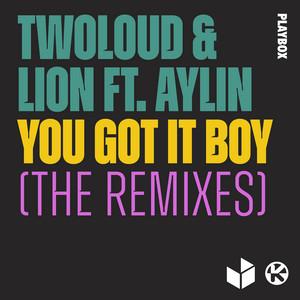 You Got It Boy (feat. Aylin) [The Remixes]