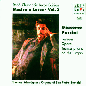 Musica A Lucca Vol. 2: Organ Works