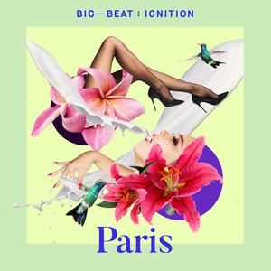 Big Beat Ignition: Paris album