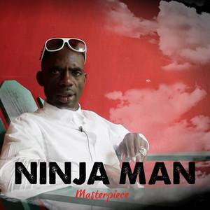 Ninja Man Masterpiece