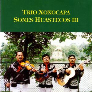 Mi Huastequita by Trio Xoxocapa