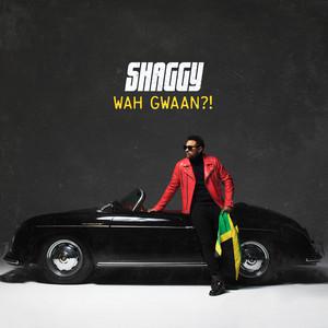 Shaggy Ft Nicky Jam – Body Good (Acapella)
