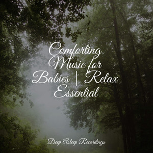 Comforting Music for Babies | Relax Essential