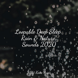Loopable Deep Sleep Rain & Nature Sounds 2020