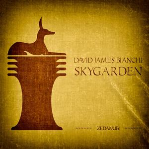 Skygarden - Radio Edit cover art