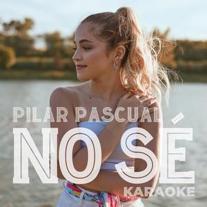 No Sé (Karaoke)