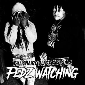 Fedz Watching