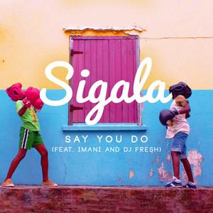 Say You Do (feat. Imani Williams & DJ Fresh) [Radio Edit]