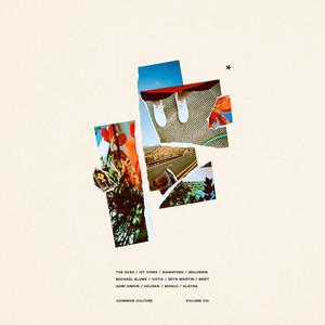 Common Culture, Vol. VIII album