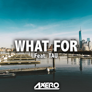 What For (feat. TAU)