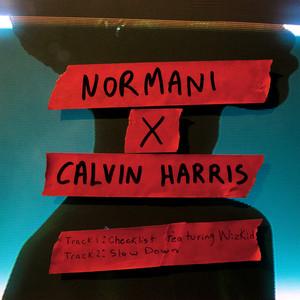 Normani With Calvin Harris – Slow Down (Acapella)