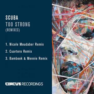 Too Strong (Remixes)