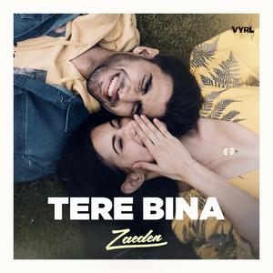 tere bina - Zaeden | MP3 Download