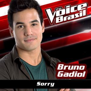 Sorry (The Voice Brasil 2016)