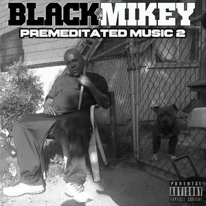Premeditated Music 2