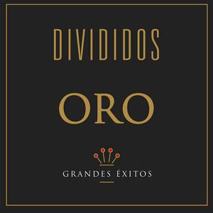 Serie Oro - Divididos