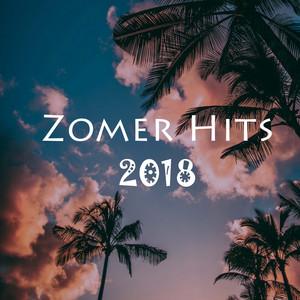 Zomer Hits 2018