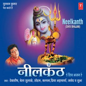 Shiv Shankar Ki Leela cover art
