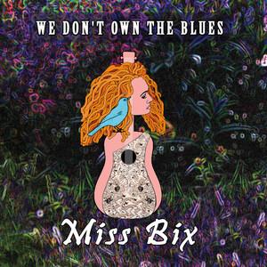 We Don't Own the Blues album